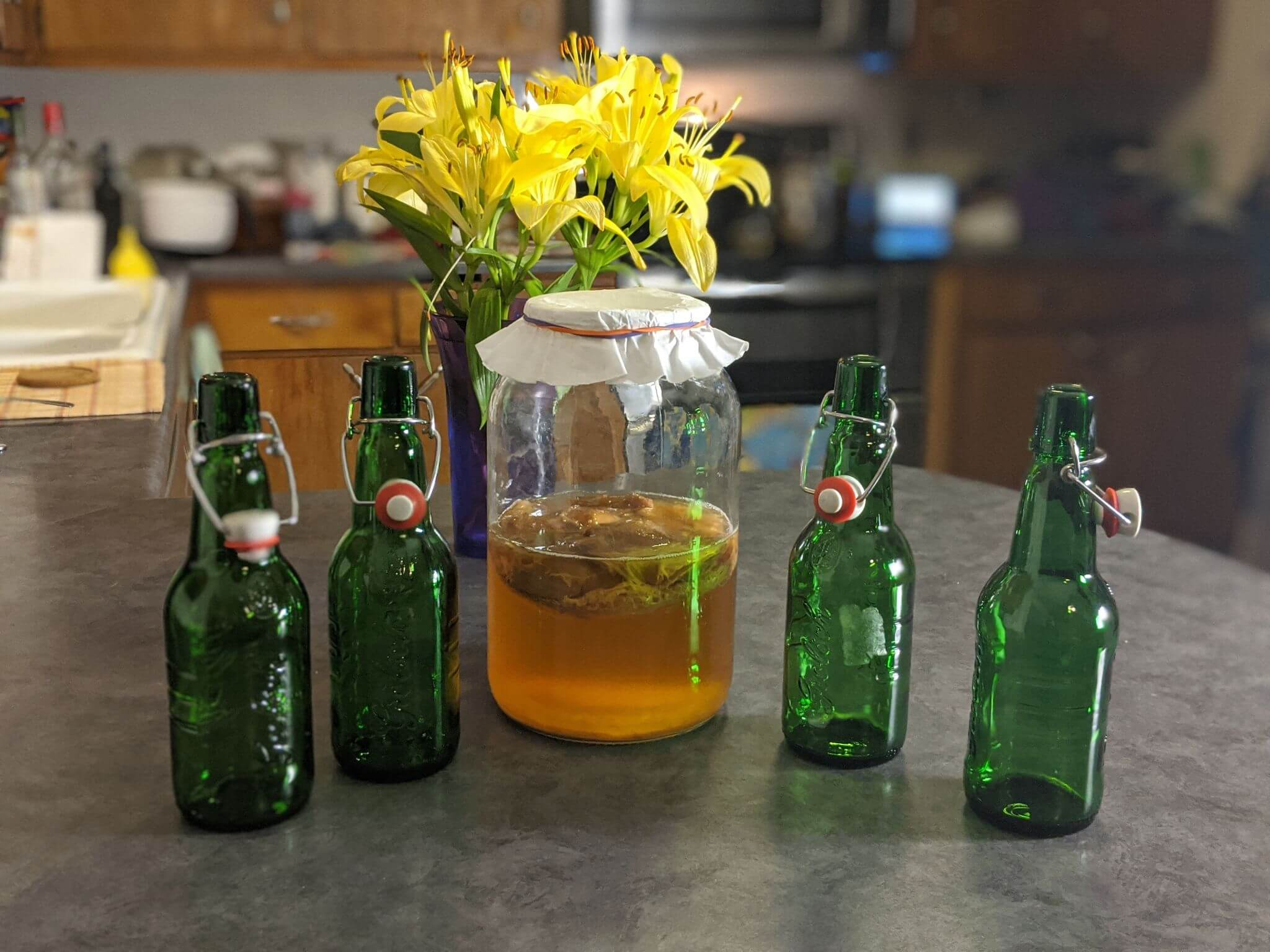 Kombucha and bottles on counter