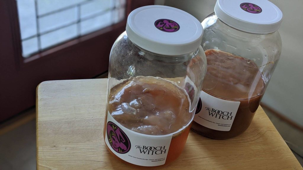 Two vessels of kombucha with solid screwtop lids